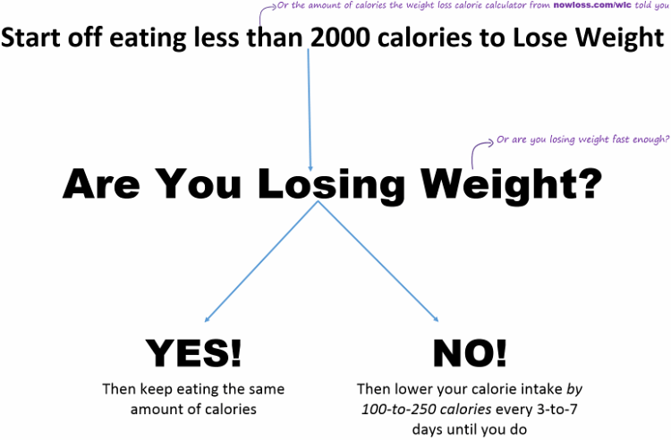 the nowloss diet 4 steps to eat anything you like to lose weight . calories  and weight loss chart