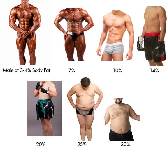 mens visual bodyfat chart .